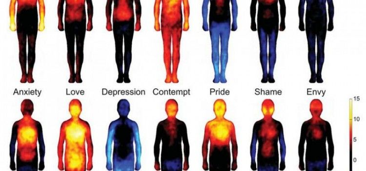 Interesting! This Map Shows Where You Feel Emotions in your body